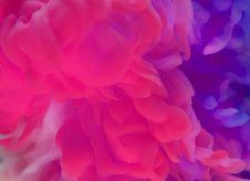 Free Abstract, Aquatic, Art Royalty Free Stock Photos - 117119908
