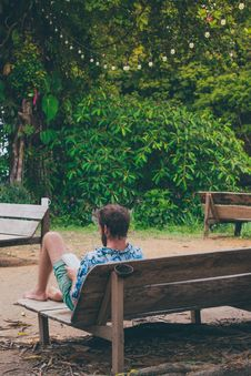 Free Man Reading Book Sitting On Bench Near Trees Royalty Free Stock Photo - 117352455