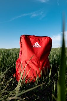 Free Orange Adidas Backpack On Grass Field Royalty Free Stock Image - 117352656