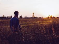 Free Man In Blue Sweatshirt In The Middle Of Field During Sunset Royalty Free Stock Photo - 117421005