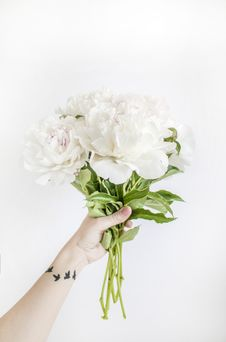 Free Person Holding White Peony Bouquet Closeup Photography Royalty Free Stock Photography - 117486157