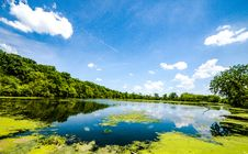 Free Landscape Photography Of Body Of Water Near Trees Royalty Free Stock Images - 117536949