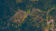 Free Aerial Photography Of Road Beside Forest Royalty Free Stock Photography - 117688957
