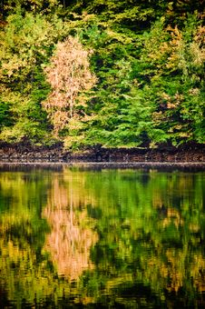 Free Autumn Mirror Royalty Free Stock Photo - 11777155