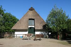 Free Historic Site, Thatching, Roof, Building Stock Photography - 117728702