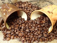 Free Jamaican Blue Mountain Coffee, Coffee, Caffeine, Commodity Stock Image - 117728871