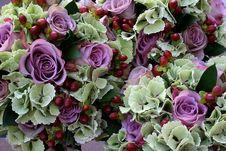 Free Flower, Floristry, Purple, Flower Arranging Stock Photos - 117729013