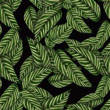 Free Green, Pattern, Leaf, Design Stock Image - 117729171