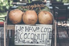 Free Tan Coconuts Placed Atop Brown Wooden Table Royalty Free Stock Photo - 117767965