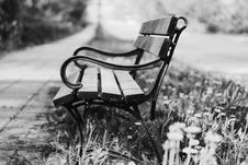 Free Grayscale Photography Of Brown And Black Bench Royalty Free Stock Photography - 117768017