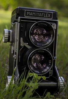 Free Closeup Of Mamiya Flex Twin-lens Camera On Grass Royalty Free Stock Images - 117768069