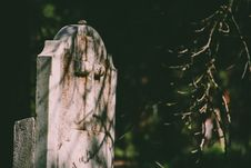 Free Selective Focus Photography Of Tombstone Royalty Free Stock Photo - 117768115