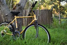 Free Bicycle, Road Bicycle, Land Vehicle, Bicycle Frame Stock Images - 117787994