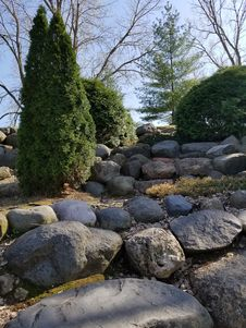 Free Tree, Wall, Garden, Rock Stock Image - 117788041