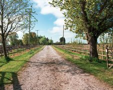 Free Path, Tree, Road, Nature Reserve Royalty Free Stock Image - 117789106
