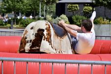 Free Man Riding Brown And White Electronic Bull Stock Image - 117852971