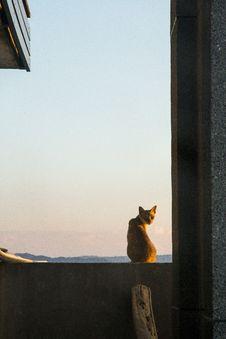 Free Sky, Window, Wood, Sunlight Stock Image - 117884531