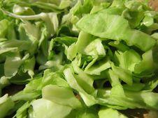 Free Vegetable, Leaf Vegetable, Vegetarian Food, Food Royalty Free Stock Images - 117885759