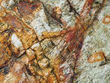 Free Rock, Geology, Bedrock, Organism Stock Images - 117885804