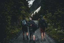 Free Three Men Walking On Road Between Tall Trees Royalty Free Stock Photos - 117989038