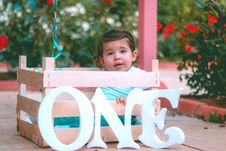 Free Boy Sitting On Wooden Crate Near Flowers Royalty Free Stock Image - 117989146
