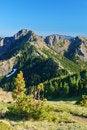 Free Mountain Meadow Stock Photo - 1180010