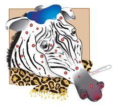 Free Spotty Zebra Royalty Free Stock Image - 1183716