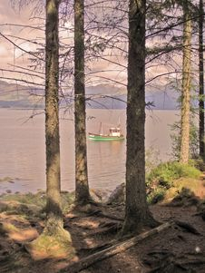 Fishing Boat Between The Trees Stock Photo