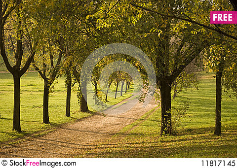 Free Fall Landscape In A Park, Rome, Italy Royalty Free Stock Photo - 11817145