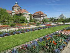 Free Plant, Garden, Botanical Garden, Flower Stock Images - 118154064
