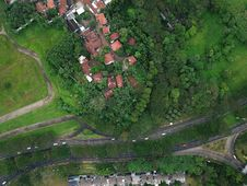 Free Bird S Eye View OfHouses Surrounded By Trees Stock Images - 118221534