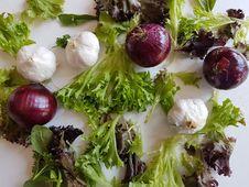 Free Vegetable, Leaf Vegetable, Food, Salad Royalty Free Stock Photo - 118242085