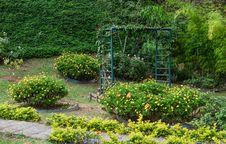 Free Garden, Vegetation, Botanical Garden, Plant Royalty Free Stock Image - 118242236