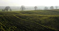 Free Field, Agriculture, Hill Station, Hill Stock Photography - 118242432