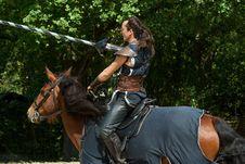 Free Horse, Horse Like Mammal, Bridle, Horse Harness Stock Image - 118242911