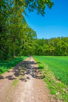 Free Road, Path, Nature, Sky Stock Photo - 118325220