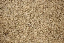 Free Food Grain, Whole Grain, Husk, Grain Stock Photography - 118325522
