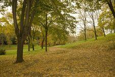 Free Park Landscape Foliage Royalty Free Stock Images - 11844499
