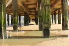 Free Water, Structure, Reflection, Tree Royalty Free Stock Photos - 118429928