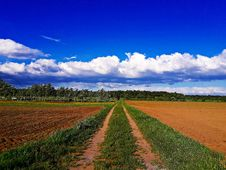 Free Sky, Cloud, Field, Grassland Royalty Free Stock Images - 118430169