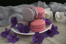 Free Purple, Macaroon, Lilac, Violet Stock Image - 118430301