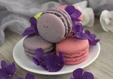 Free Lilac, Purple, Violet, Macaroon Royalty Free Stock Image - 118430336