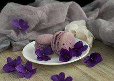Free Purple, Lilac, Violet, Petal Stock Images - 118430344