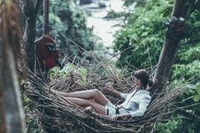 Free Woman Wearing Gray Long-sleeved Shirt On Nest Hammock In Selective Focus Photography Stock Image - 118546001