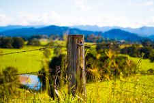 Free Shallow Focus Photography Of Brown Wooden Pole With Grey Barb Wires Stock Photos - 118598833