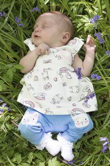 Free Blue, Child, Infant, Flower Stock Photos - 118778633