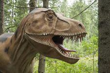 Free Dinosaur, Terrestrial Animal, Fauna, Tyrannosaurus Royalty Free Stock Images - 118778909