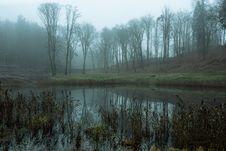 Free Wetland, Fog, Mist, Water Royalty Free Stock Photos - 118779118