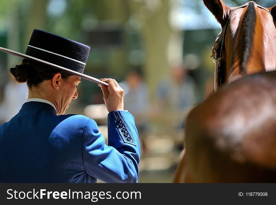 Horse, Horse Like Mammal, Jockey, Horse Tack