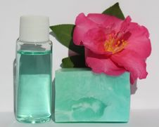 Free Flower, Product, Petal, Liquid Stock Image - 118871321